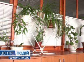 Небезпечні кімнатні рослини