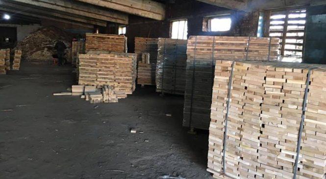 СБУ блокувала на Житомирщині незаконний оборудок лісу